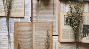 5 storie romantiche da leggere assolutamente